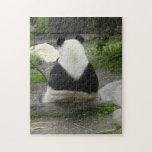 PandaSD002 Puzzle Con Fotos