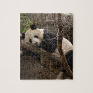 PandaSD003 Jigsaw Puzzle