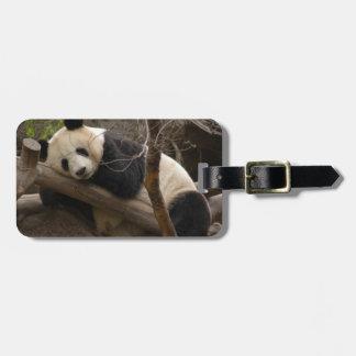 PandaSD003 Travel Bag Tag