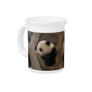 PandaSD005 Jarron