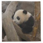 PandaSD005 Printed Napkin