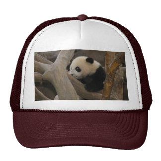 PandaSD005 Trucker Hat