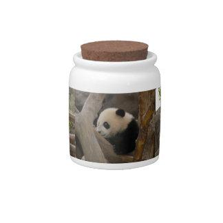 PandaSD006 Candy Jar