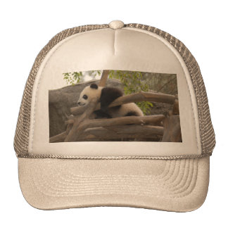 PandaSD006 Trucker Hat