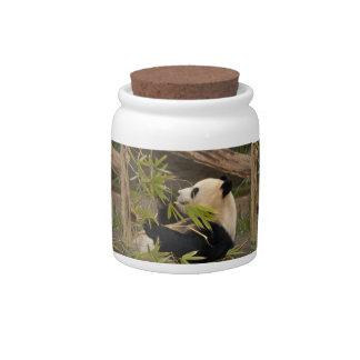 PandaSD007 Candy Jars