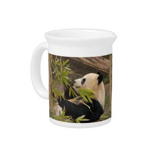 PandaSD007 Jarras Para Bebida