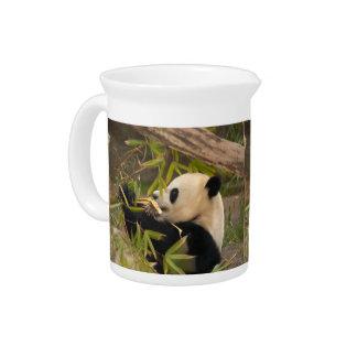 PandaSD008 Jarron