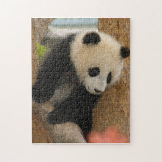 PandaSD009 Jigsaw Puzzle