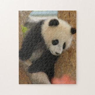 PandaSD009 Rompecabezas Con Fotos