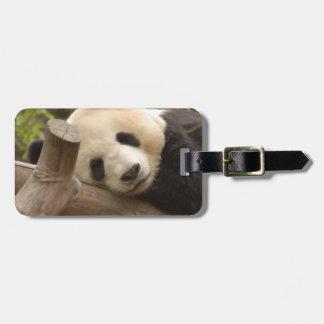 PandaSD010 Etiqueta De Equipaje