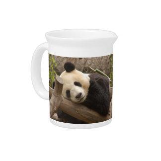 PandaSD010 Jarra De Beber