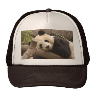 PandaSD010 Trucker Hat