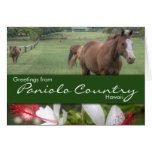 Paniolo Country card