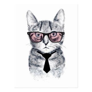 Panka's Smart Cat Postcard