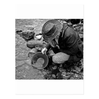 Panning for Gold Black and White Postcard