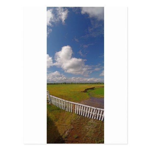 Panorama46 Cottonwood CA Postcard