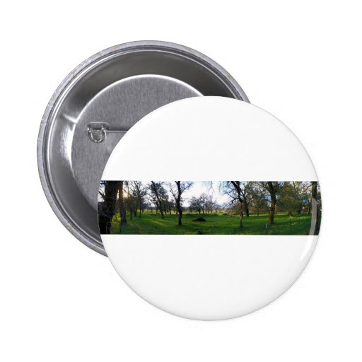 Panorama 9 2 inch round button