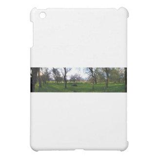 Panorama 9 iPad mini cases
