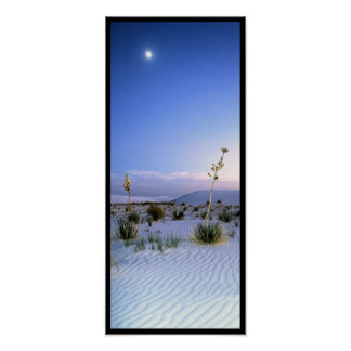 Panorama de la yuca del claro de luna posters