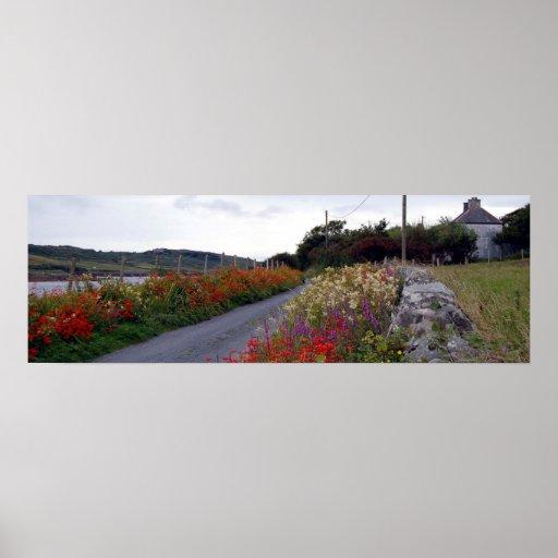 Panorama de las flores de Clifden Impresiones