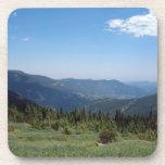 Panorama de los Colorado Rockies Posavasos De Bebida