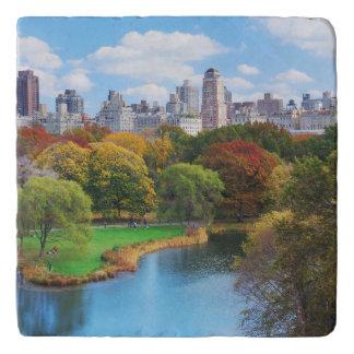 Panorama del Central Park de New York City Salvamanteles