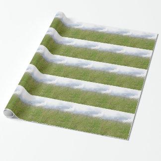 Panorama del prado del verano papel de regalo
