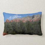 Panorama of Red Rocks Throw Pillow