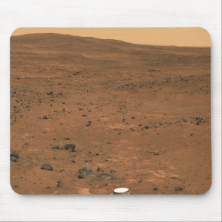 Panorama parcial del Seminole de Marte Tapete De Raton