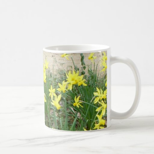 Panoramic Daffodil Flowers Mug
