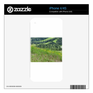 Panoramic mountain view decal for iPhone 4