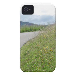 Panoramic mountain view iPhone 4 case