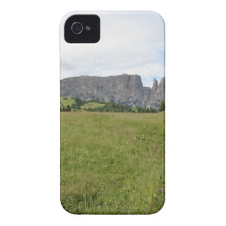 Panoramic mountain view iPhone 4 covers