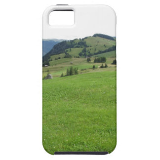 Panoramic mountain view iPhone SE/5/5s case