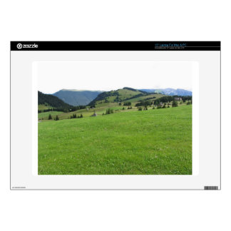 "Panoramic mountain view skin for 15"" laptop"