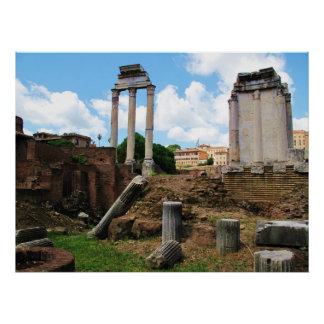 Panoramic Photo Details The Ancient Roman Forum Poster