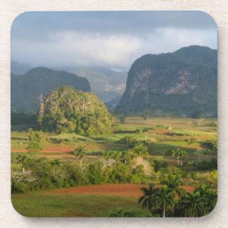 Panoramic valley landscape, Cuba Beverage Coaster