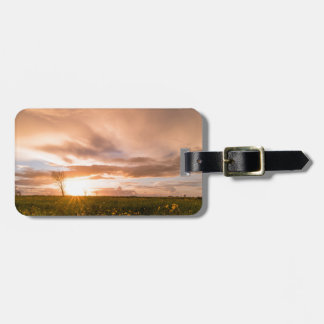 Panoramic view of a flowering  yellow daisy flower bag tag