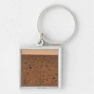 Panoramic view of Bonneville Crater Keychain