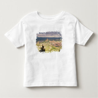 Panoramic view of Le-Puy-en-Velay Toddler T-shirt