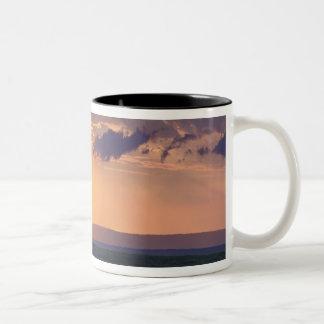 Panoramic view of single acacia tree at Two-Tone coffee mug