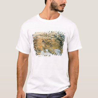 Panoramic view of the Whole Empire of Russia T-Shirt