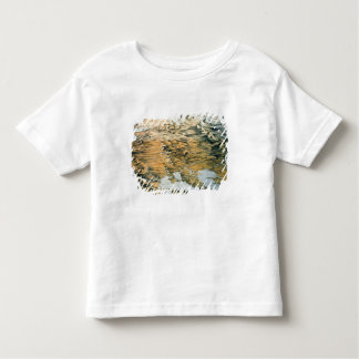 Panoramic view of the Whole Empire of Russia Toddler T-shirt