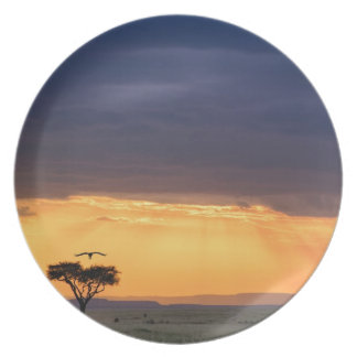 Panoramic view of Vulture and acacia tree Dinner Plate