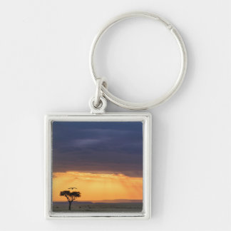 Panoramic view of Vulture and acacia tree Keychains