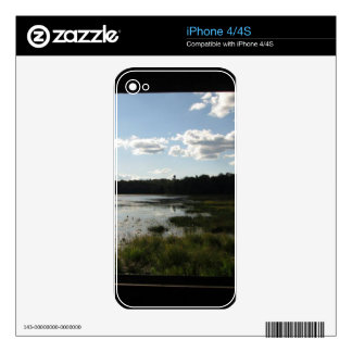 Panoramic view skins for the iPhone 4
