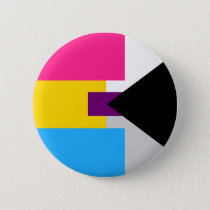 Panromantic Demisexual Pin