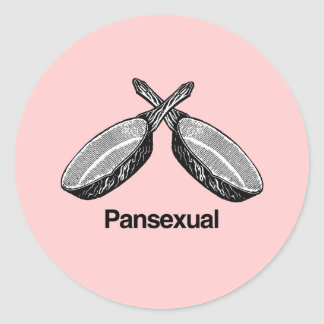 Pansexual - classic round sticker