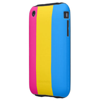 Pansexual flag case
