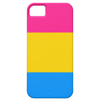 Pansexual flag iPhone SE/5/5s case